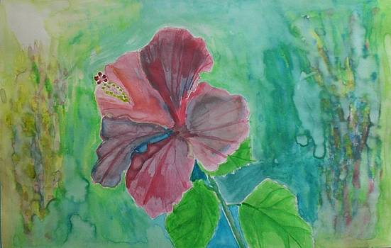 The Red Hibiscus on a Misty Morning by Ramon Bendita