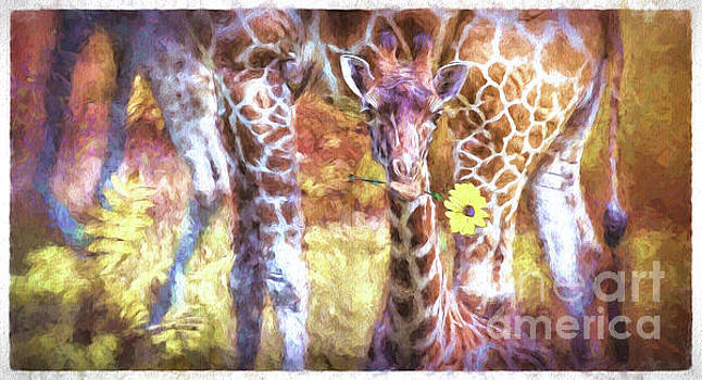 The Whimsical Giraffe  by Mary Lou Chmura