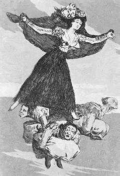 They Have Flown 1799 by Goya Francisco