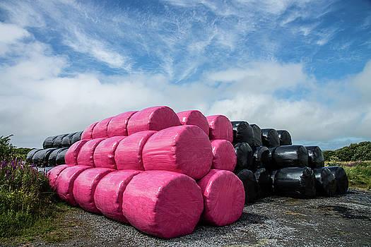 Think Pink by Martina Fagan