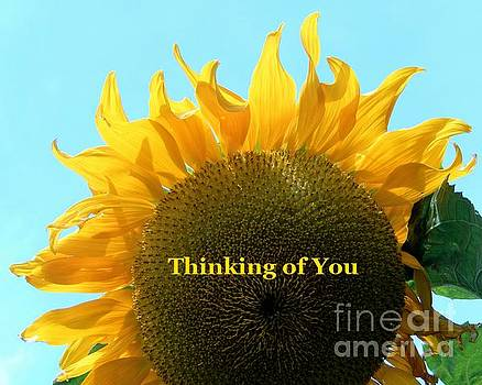 Sharon Williams Eng - Thinking of You