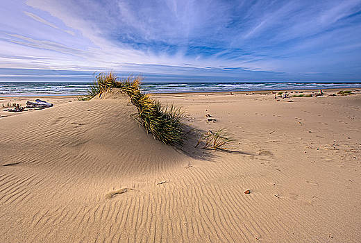 Paul W Sharpe Aka Wizard of Wonders - This is Oregon State 5  - Jettys Rippling Sand Dunes
