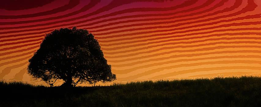 Paul W Sharpe Aka Wizard of Wonders - This is the Philippines No.11 - Mango Tree Sunset
