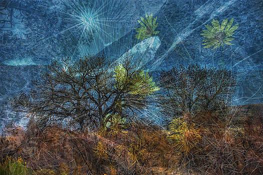 Paul W Sharpe Aka Wizard of Wonders - This is Utah No. 6 - The Diverse Desert