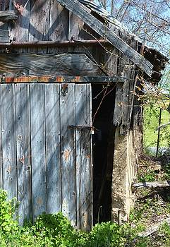 Kathy Kelly - This Old Barn Door
