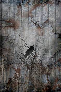 This Old Crow by Leah Highland