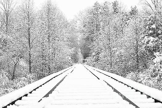 This Way to Winter by Benanne Stiens