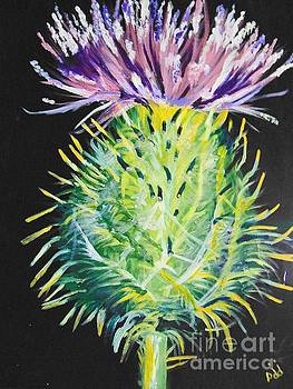 Thistle by Saundra Johnson