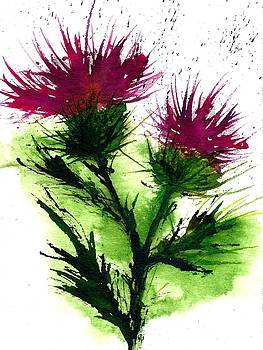 Thistle-Wildflowers of europe by Garima Srivastava