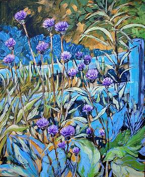 Thistles and fence by Cathy MONNIER