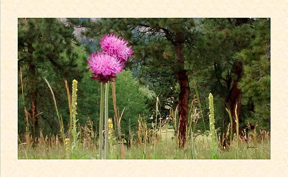 Thistles and Pines in Forest by Gretchen Wrede