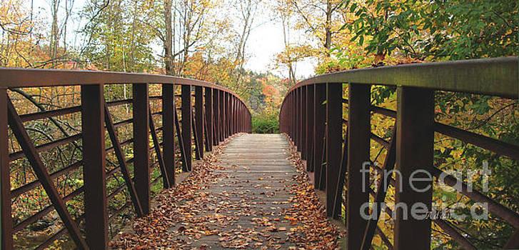 Felipe Adan Lerma - Thompson Park Bridge Stowe Vermont
