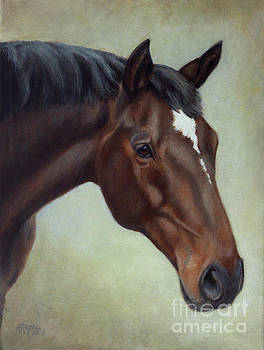 Amy Reges - Thoroughbred Horse, Brown Bay Head Portrait