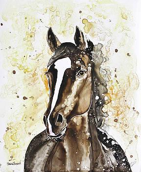 Thoroughbred by Shaina Stinard