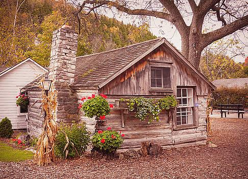 Thorp Cabin Door County Wisconsin by Heidi Hermes
