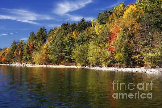 Jill Lang - Thorpe Lake