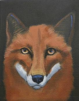 Thoughtful Fox by Laurel Porter-Gaylord