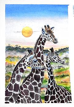 Three Giraffes    SOLD by Richard Benson
