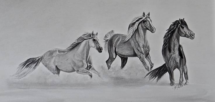 Three Amigos by Michelle McAdams