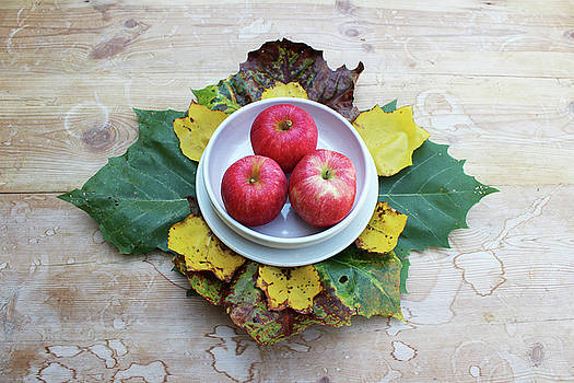Three Apples in a Bowl by Natalie Schorr