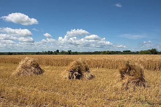 Valerie Kirkwood - Three Barley Stooks