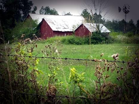 Three Barns by Michael L Kimble