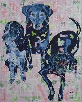 Three Black Dogs by Georgia Donovan