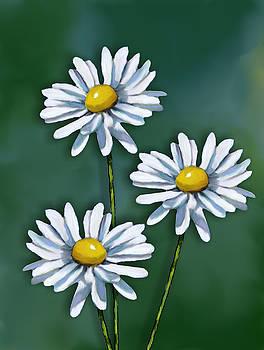 Joyce Geleynse - Three Daisies