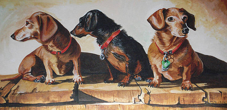 three Doxies by Laura Bolle