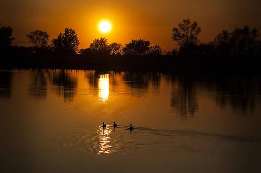 Three Ducks by Anita Hohl