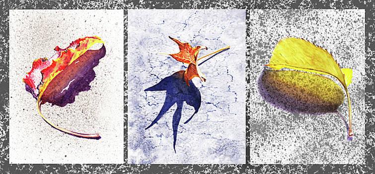 Irina Sztukowski - Three Fall Leaves Autumn Trio