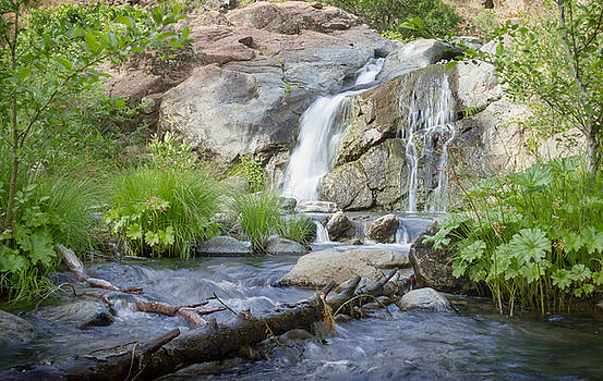 Three Falls- Cedar Creek Falls by Andrea Borden