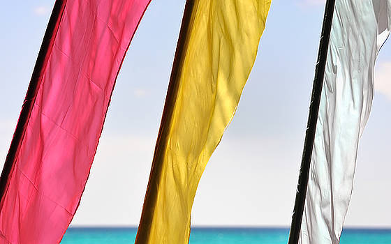 Paul W Sharpe Aka Wizard of Wonders - Three flags blowing in the tropical wind