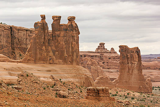 Three Gossips by Peter J Sucy