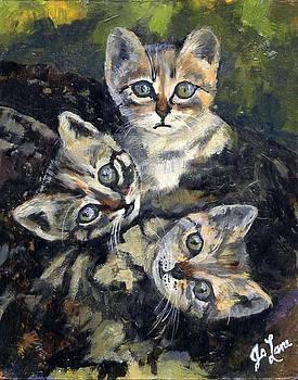 Three Kittens by Aletha Jo Lane