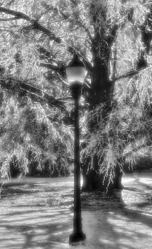 Three Lights by Michael Mazaika