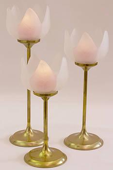 Sandra Foster - Three Lotus Candle Holders
