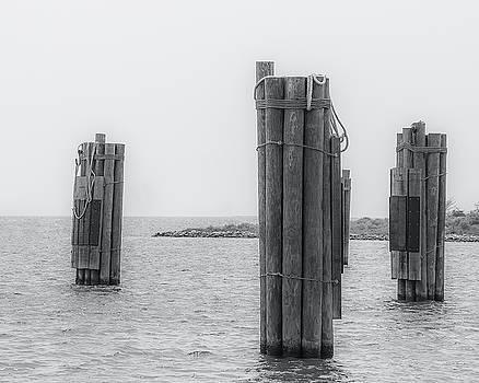 Three Pillars by David Johnson