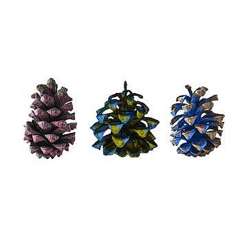 Stan  Magnan - Three Pine Cones