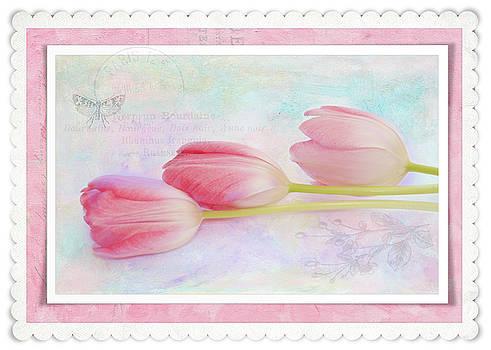Three Pink Tulips by Nancy Kirkpatrick