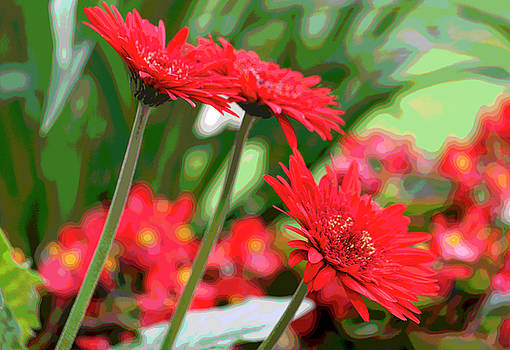 Three Red Gerberas Posterized II by Suzanne Gaff