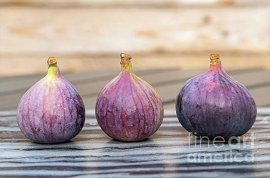 Sophie McAulay - Three ripe figs