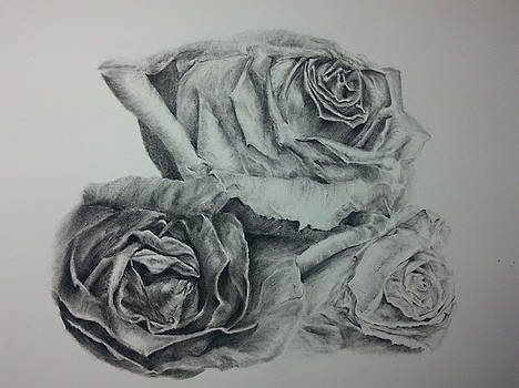 Three Roses by Mary Berryhill