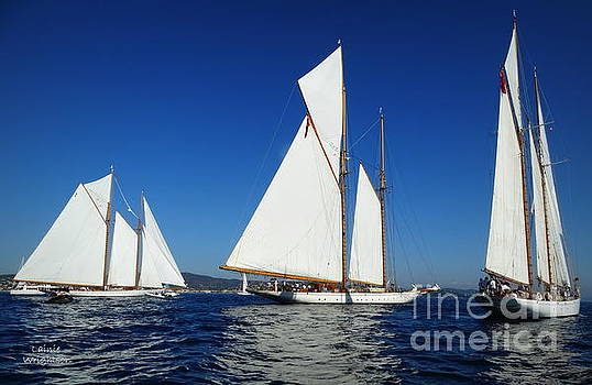 Three Schooners by Lainie Wrightson