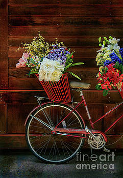 Three Speed Flower Bicycle by Craig J Satterlee