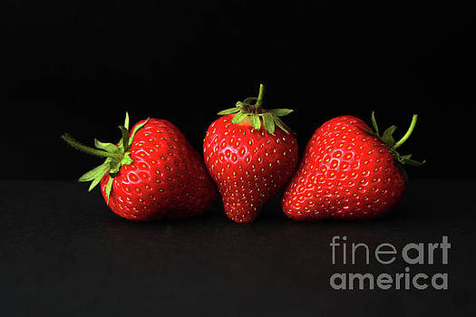 Alan Harman - Three Strawberries On Black H