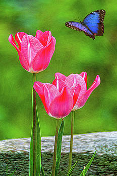 Three Tulips by Cathy Kovarik