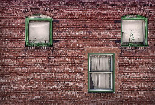 Three Windows - Brick Building by Nikolyn McDonald