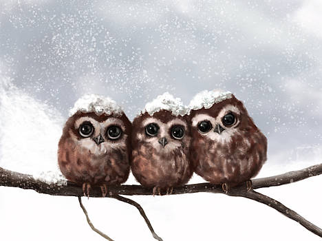 Three Wise by Kristina Becker