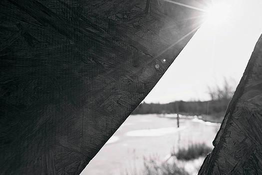 Through a bird blind by Sue Collura